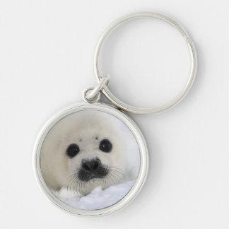 Baby Harp Seal Key Ring