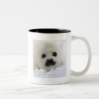 Baby Harp Seal Two-Tone Coffee Mug