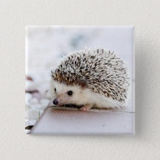 Baby Hedgehog 15 Cm Square Badge