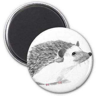 Baby hedgehog animal 6 cm round magnet