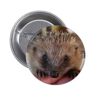 Baby Hedgehog Button