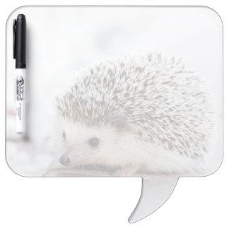 Baby Hedgehog Dry Erase Board