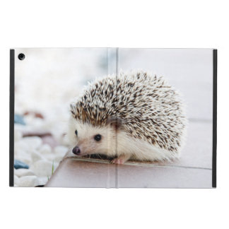 Baby Hedgehog iPad Air Cover