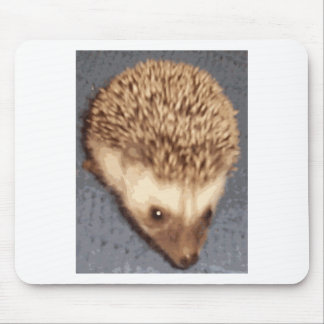 baby hedgehog mouse mat