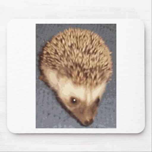 baby hedgehog mouse pads