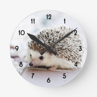 Baby Hedgehog Round Clock