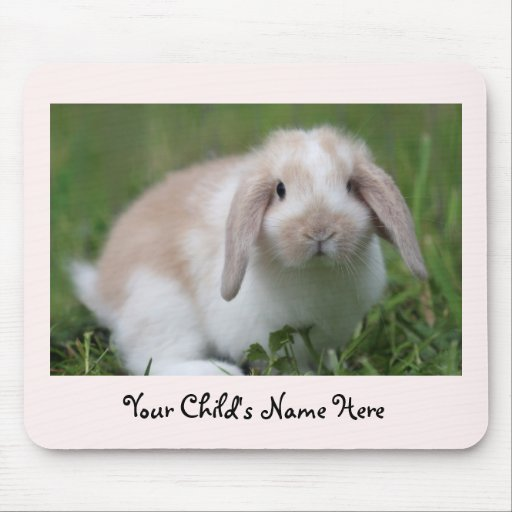 Baby Holland Lop Bunny Mousepad