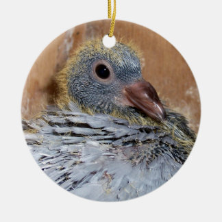 Baby Homing Pigeon Ornament