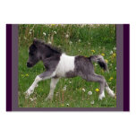 Baby Horse Profile Card Business Card