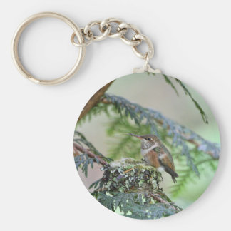 Baby Hummingbird Sticking Out Its Tongue Basic Round Button Key Ring
