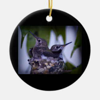 Baby Hummingbirds Christmas Ornament