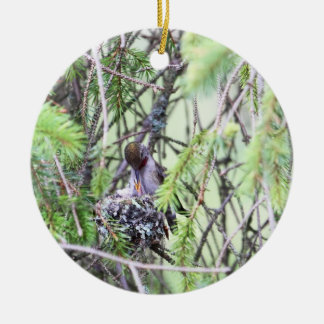 Baby Hummingbirds in a Nest Christmas Ornament