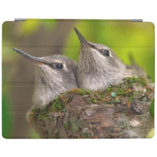 Baby hummingbirds iPad cover