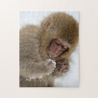 Baby Japanese Macaque | Snow Monkey Jigsaw Puzzle