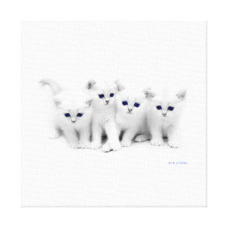 Baby Kittens Canvas Print