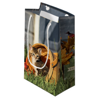 Baby Kittens in Fall Decorations Small Gift Bag