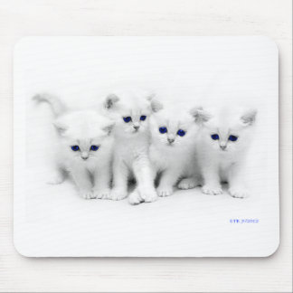 Baby Kittens Mouse Pad