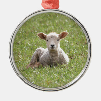 Baby Lamb Christmas Ornament