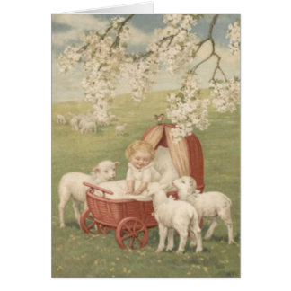 Baby Lamb Dogwood Tree Field Card