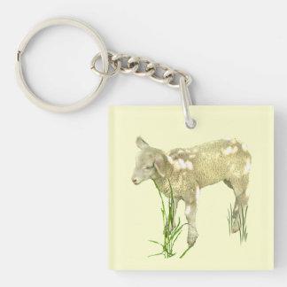Baby Lamb in Grass Acrylic Keychain