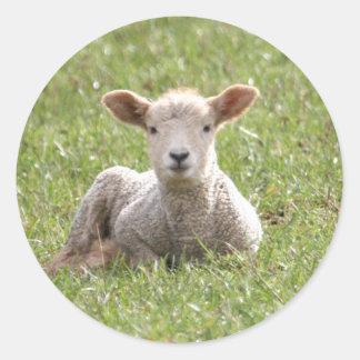 Baby Lamb Round Sticker