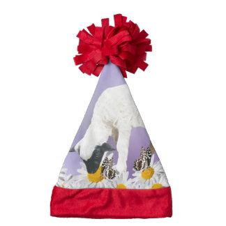 Baby Lambs first steps Santa Hat