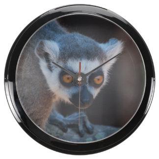 Baby Lemur Aquavista Clock