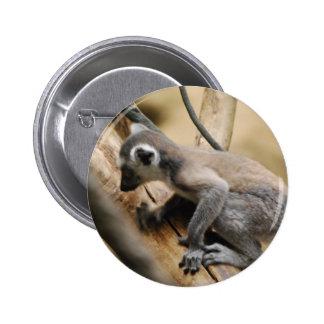 Baby Lemur  Button