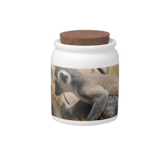 Baby Lemur Candy Jar