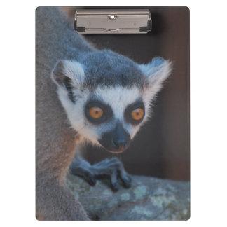 Baby Lemur Clipboard