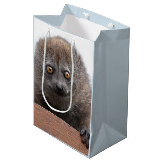 Baby Lemur Gift Bag