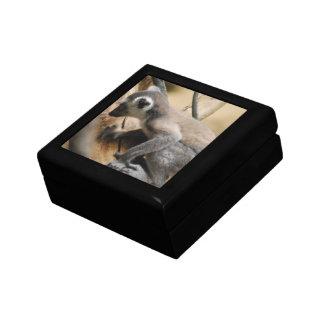 Baby Lemur Gift Box
