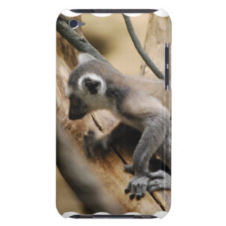 Baby Lemur iTouch Case Barely There iPod Cover