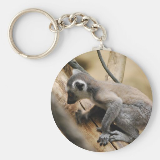 Baby Lemur  Keychain