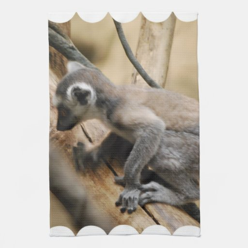 Baby Lemur Kitchen Towel