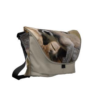 Baby Lemur Messenger Bag