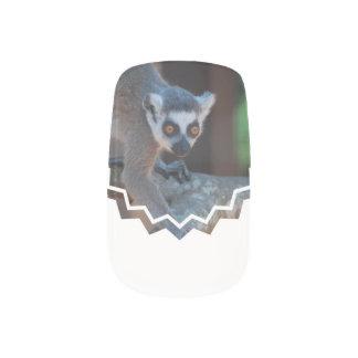 Baby Lemur Minx ® Nail Art