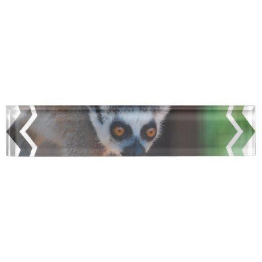 Baby Lemur Name Plates