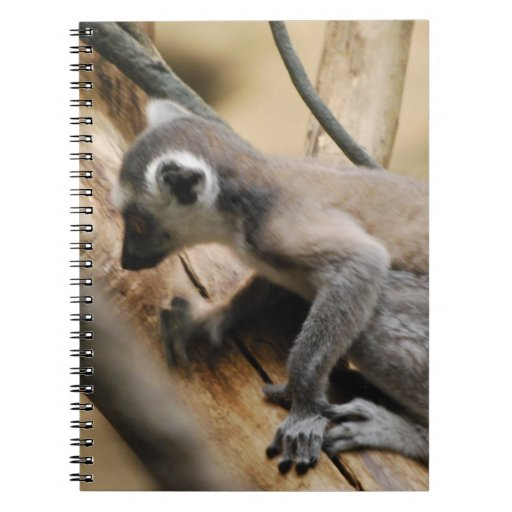 Baby Lemur Notebook