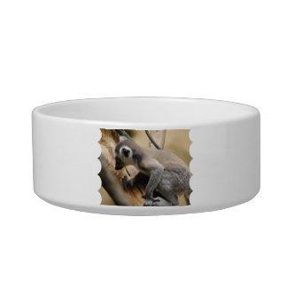Baby Lemur Pet Bowl Cat Food Bowls
