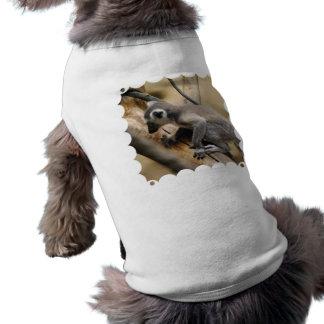 Baby Lemur Pet Shirt