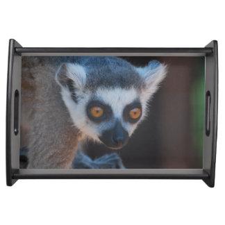Baby Lemur Service Trays