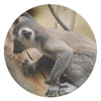 Baby Lemur Plate