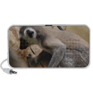 Baby Lemur Portable Speakers