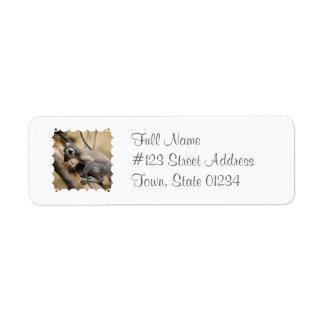Baby Lemur Return Address Mailing Label Return Address Label