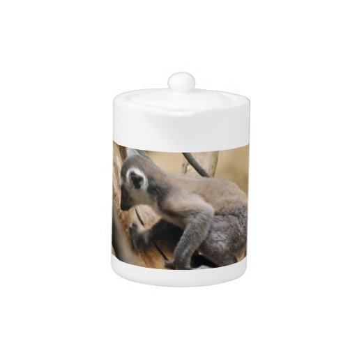 Baby Lemur Teapot