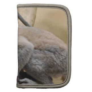 Baby Lemur Wallet Planners