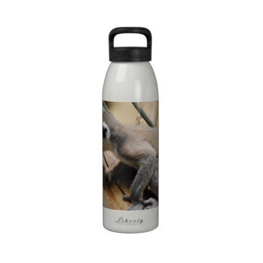 Baby Lemur Water Bottle