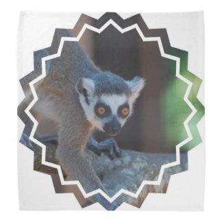 Baby Lemur Do-rags