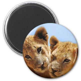 Baby lion love 6 cm round magnet